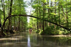 2020西宁大黑沟森林公园门票交通 大黑沟森林公园旅游攻略
