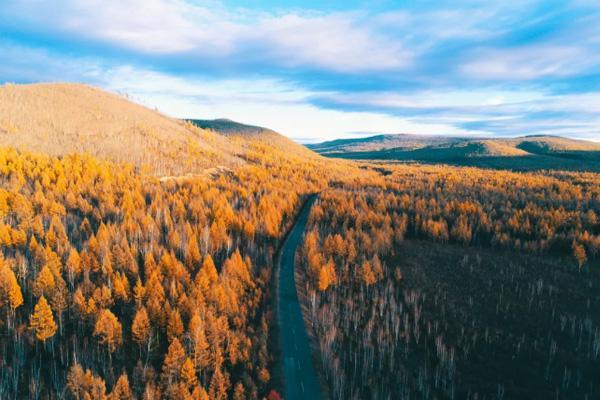 10月去哪里旅行最好的国内秋天哪里景色最好?