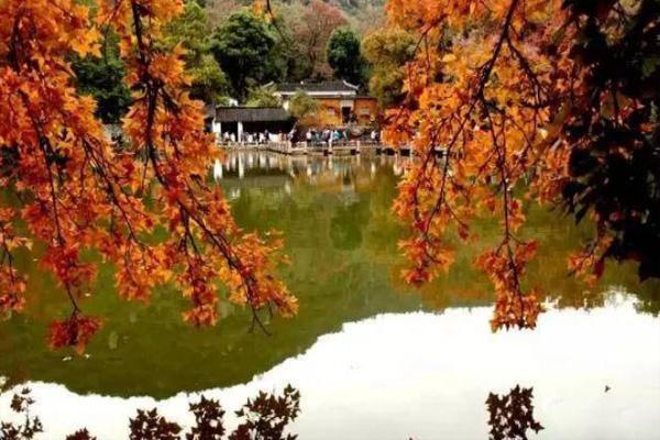 苏州有什么好玩的地方旅游景点