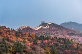 2020北京红叶节活动汇总 时间-地点