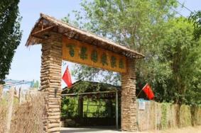 2020新疆达西村门票交通天气 达西村旅游攻略