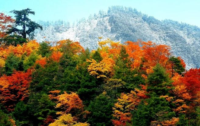 2020四川红叶最佳观赏地点及时间
