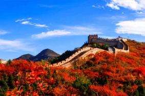 2020北京八達嶺長城紅葉什么時候紅