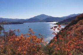2020北京金海湖紅葉節開放時間 觀賞指南