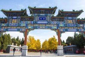 2020北京地壇公園銀杏最佳觀賞期