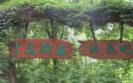 千島湖森林氧吧值得去嗎 千島湖森林氧吧門票多少錢