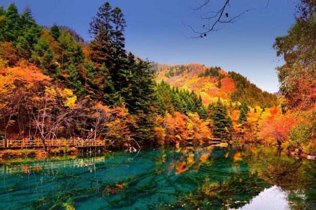中國十大紅葉風景區 中國紅葉觀賞地排名