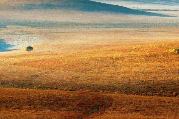 壩上草原最美季節 最佳游玩時間