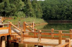 2020梅子湖公園旅游攻略 梅子湖公園有哪些景點