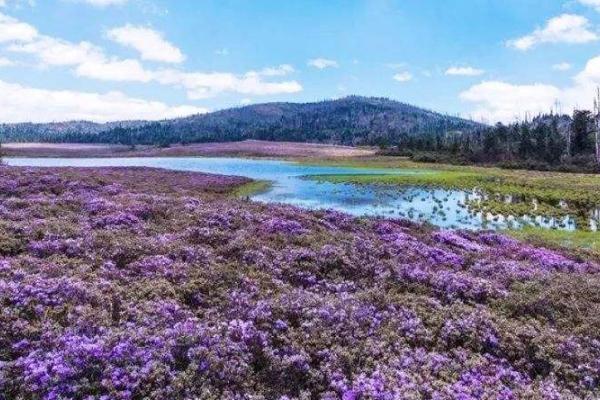 2020千湖山旅游攻略 千湖山有哪些景點