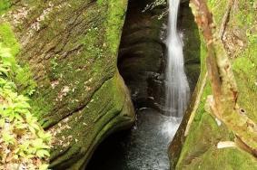 2020汉水源森林公园旅游攻略 汉水源森林公园门票交通天气景点