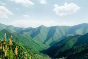 2020龍棲山國家級自然保護區旅游攻略 龍棲山國家級自然保護區門票交通天氣景點