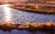 腾冲北海湿地门票多少钱 腾冲北海湿地什么时候去最好