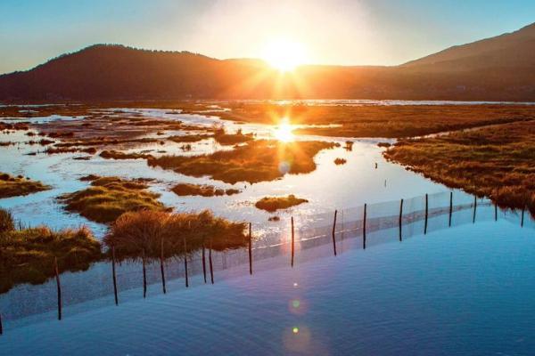 騰沖北海濕地門票多少錢 騰沖北海濕地什么時候去最好