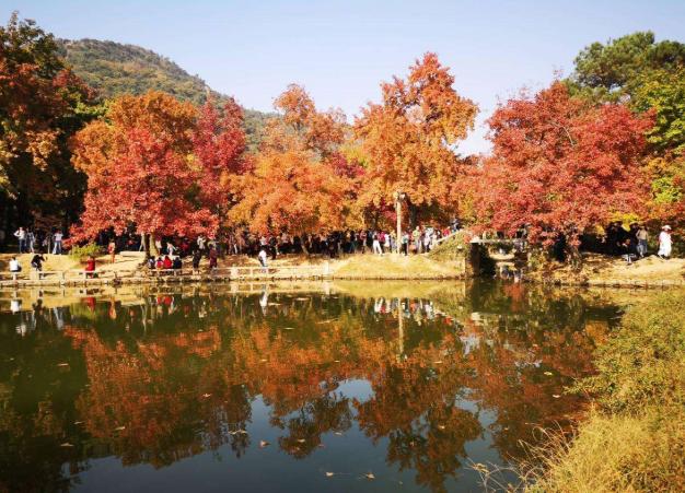 天平山红枫最佳拍摄时间 天平山哪里红叶最好