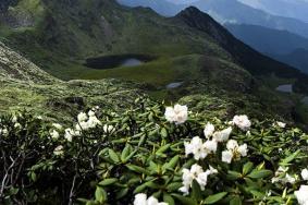 2020蒼山國家地質公園旅游攻略 蒼山國家地質公園有哪些景點