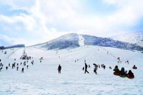 2020神农架四大滑雪场开放时间