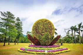 2020深圳香蜜公园分会场文化活动活动及表演汇总