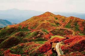 2020大圍山國家公園旅游攻略 大圍山國家公園景點介紹