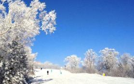 2020亚布力滑雪旅游度假区开放时间 亚布力滑雪旅游度假区旅游攻略