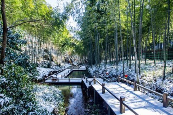 2020天目湖雪景最佳观赏地点