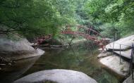 天池山国家森林公园怎么样 游玩攻略