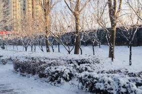 12月14日烟台暴雪停运绕行公交及高速交通管