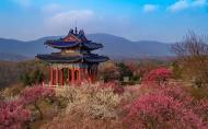 南京梅花山旅游景区介绍 门票多少钱