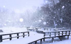 2020南京飄雪民俗文化節時間是什么時候 附活動攻略