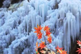 神泉峽冰瀑什么時候開放 北京神泉峽冰瀑旅游攻略