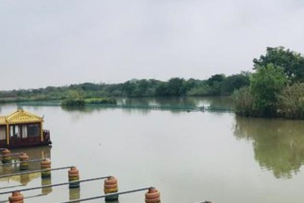 2021下渚湖国家湿地公园旅游攻略 下渚湖国家湿地公园交通门票
