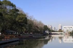 2021九山公园旅游攻略 九山公园门票交通天气