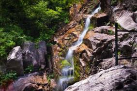 五岳寨风景区门票价格 五岳寨风景区海拔多杀米高