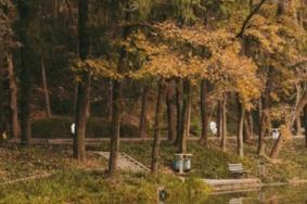 2021九峰公园旅游攻略 九峰公园门票交通