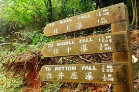 2021香港梧桐寨瀑布门票交通天气 梧桐寨瀑布旅游攻略