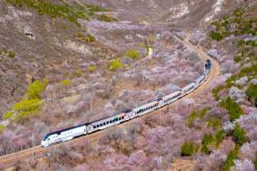 2021北京市郊鐵路S2線、懷密線及通密線最新時刻表