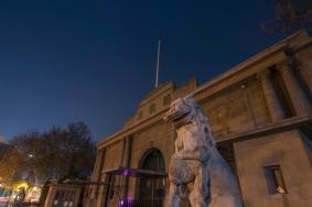 1月27日南京紫金山昆蟲博物館免費開放 春節南京景區要預約嗎