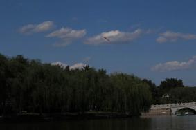 2021北京陶然亭公園春節免費開放時間及預約指南