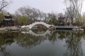 2021西沽公园介绍地址交通及游玩攻略