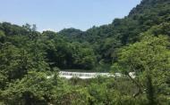 東莞大嶺山森林公園門票多少錢 大嶺山森林公園景點介紹
