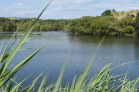 2021石家庄神树湾田园生态旅游区门票交通天气 神树湾田园生态旅游区旅游攻略