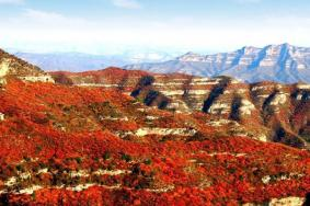 2021石家庄仙台山国家森林公园门票交通天气 仙台山国家森林公园旅游攻略