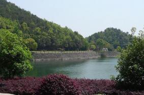 寧波九龍湖景區游玩攻略