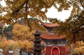 2021唐山禅林寺门票交通天气 禅林寺旅游攻略