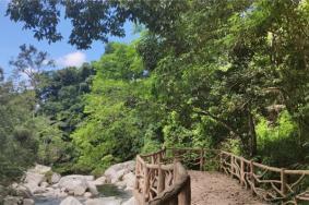 2021吊罗山国家森林公园门票介绍地址电话及景区介绍
