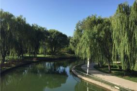 2021石河子西公园简介开放时间及景区介绍