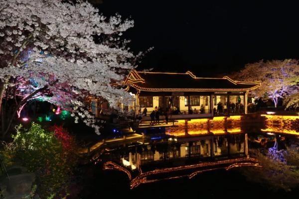 2021黿頭渚夜賞櫻花游園會時間及活動詳情
