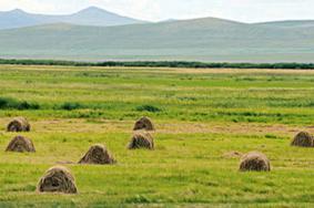 2021綏化紅星自然保護區門票交通及地址 綏化紅星自然保護區旅游攻略