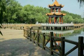 2021綏化人民公園旅游攻略 綏化人民公園門票交通及地址