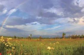 2021大佳河自然保護區旅游攻略 大佳河自然保護區門票交通及地址